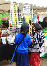 The 15th Fureai Festa Nagatoro
