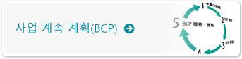 사업 계속 계획(BCP)