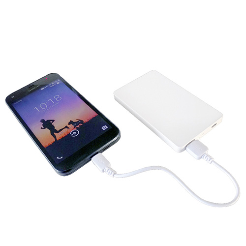 Mobile battery (4000mAh type)