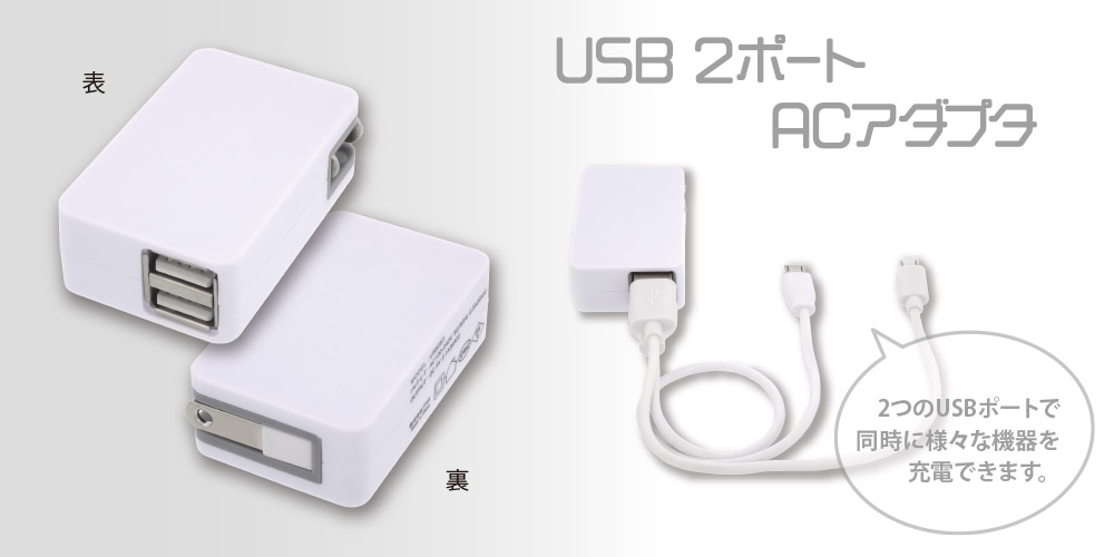 USB 2 port AC adapter